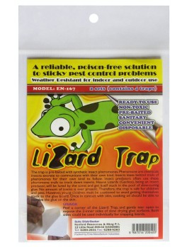 Lizard Trap- 2 Sets
